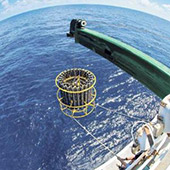 Photo of CTD deployment