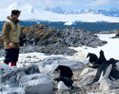 photo of researcher and penguins