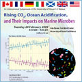 Ocean Acidification flyer thumbnail